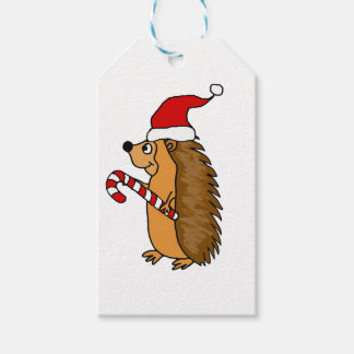 Funny Hedgehog in Santa Hat Christmas Art Gift Tags