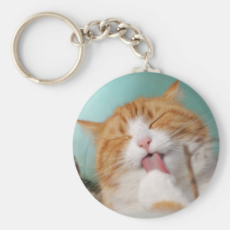 Funny hilarious silly cat key ring