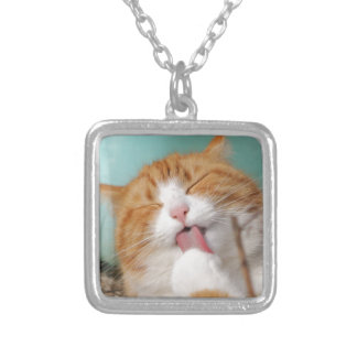 Funny hilarious silly cat silver plated necklace