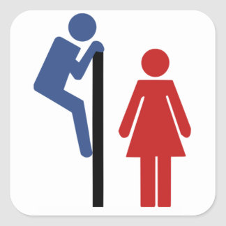 Funny His Hers Ladys Toilet Restroom Sign Square Sticker