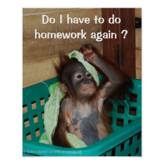 Funny Homework with Baby Orangutan Poster