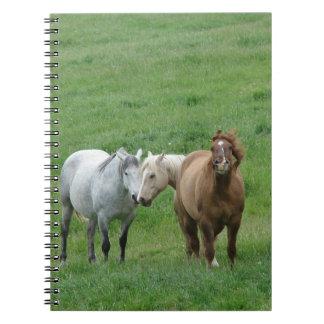 Funny Horses Notebook