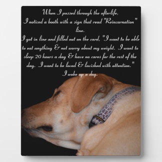 Funny Humorous Sleeping Labrador Retriever Plaque