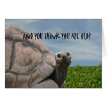 Funny Humourous Giant Sea Turtle Happy Birthday Greeting Card