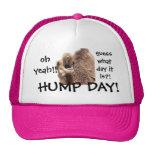 Funny Hump Day Camel Baseball Cap, Oh Yeah!!