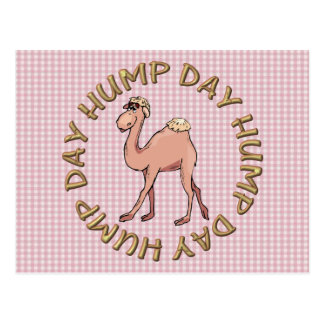 funny hump day camel postcards