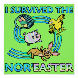 Funny I Survived the Nor'Easter Posters
