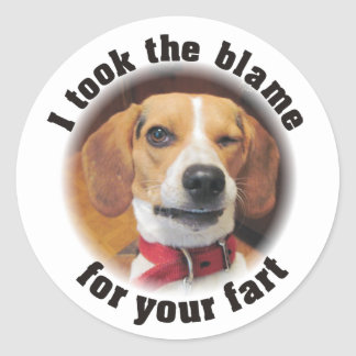 Funny I took the blame for your fart Classic Round Sticker