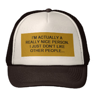 FUNNY INSULT QUOTES ACTUALLY A REALLY NICE PERSON TRUCKER HAT