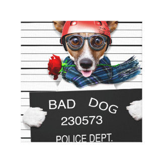 Funny jack russell ,Mugshot dog Canvas Print