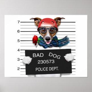 Funny jack russell ,Mugshot dog Poster