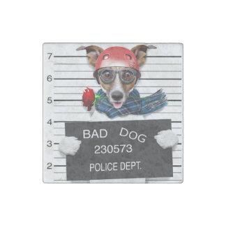 Funny jack russell ,Mugshot dog Stone Magnet