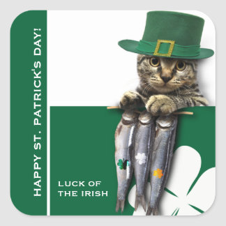 Funny Kitten St. Patrick's Day Stickers