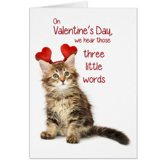 Funny Kitten Valentine Greeting Cards