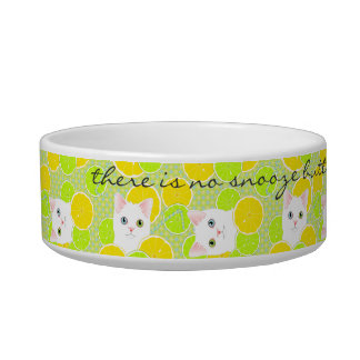 Funny Kitty Cat pet bowl Sunny, Cheerful, Cute!