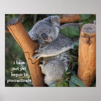 Funny Koala Meme Picture