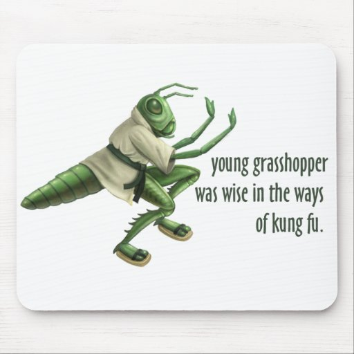 Funny Kung Fu Grasshopper Mouse Mat