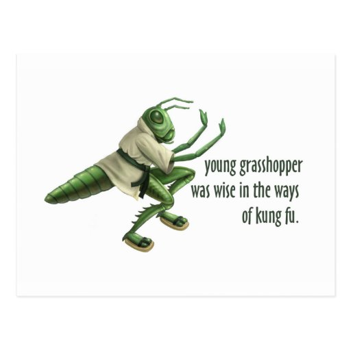 Wise Grasshopper Quotes Quotes