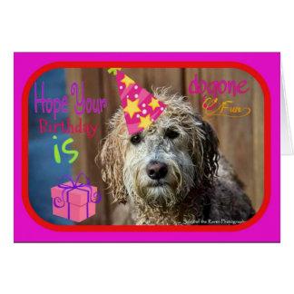 Funny Labradoodle happy birthday greeting card