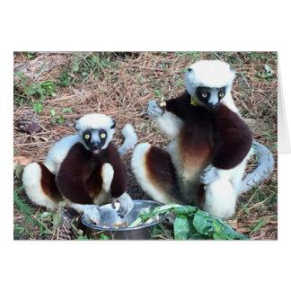 Funny Lemur Birthday Card