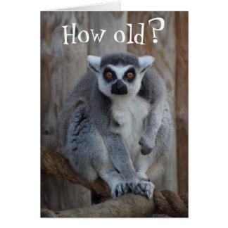 Funny Lemur Card