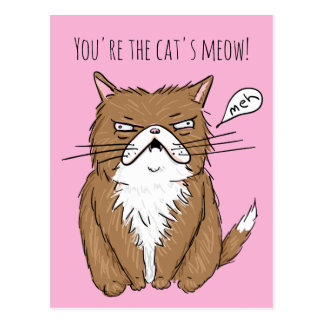 Funny Love Cats Meow Meh Card