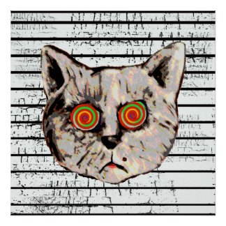 funny mad cat spiral eyes posters