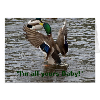 Funny Mallard Duck Birthday Card