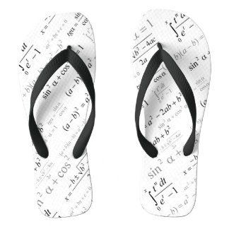 Funny Mathematics Formulas Math Geek Thongs