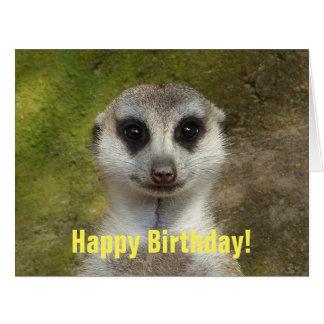 Funny meerkat 03.2.T Card