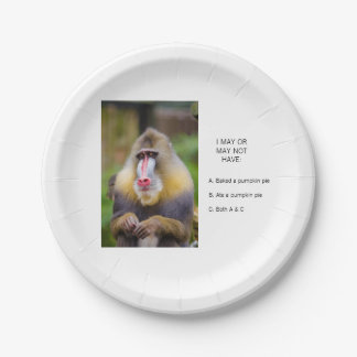 Funny Monkey Ate the Pumpkin Pie Paper Plate