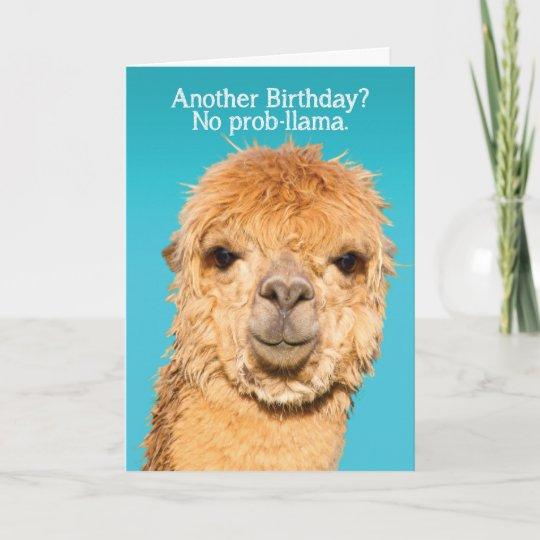 Funny No Problama Llama Birthday Wisdom Card
