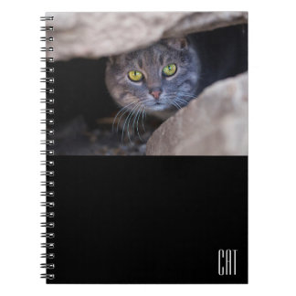 Funny notebook with cat