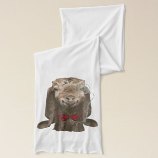 Funny Nubian Goat With Monocle Scarf