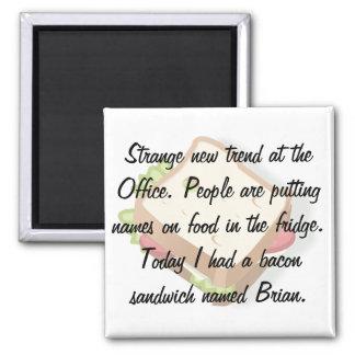 Funny Office Fridge Magnet