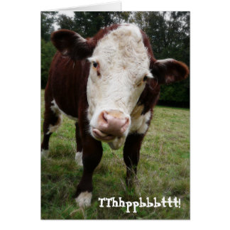 Funny Old Fart Cow Birthday Card