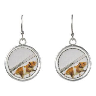 Funny orange hamster stuck running inside earrings