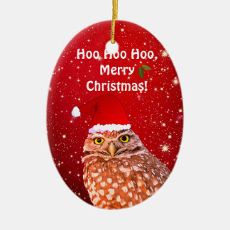 Funny Owl Christmas Ornament With Custom Year