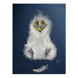 Funny owlet - baby bird postcard
