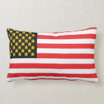 Funny Parody Video Game Flag Pillow