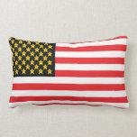 Funny Parody Video Game Flag Throw Pillow