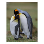 Funny penguins print