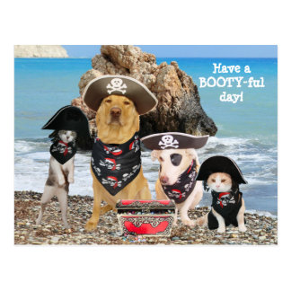 Funny Pet Pirate Day Postcard