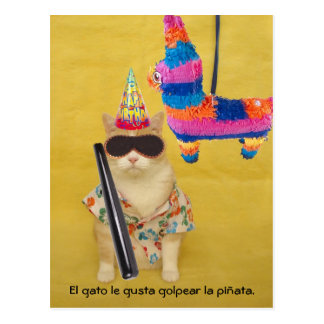 Funny Pet Spanish Postcards for Fun or Teaching