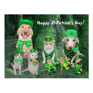 Funny Pets & Leprechauns Postcard