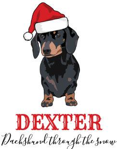 funny pets name dachshund through the snow christmas stocking - Christmas Pet Names