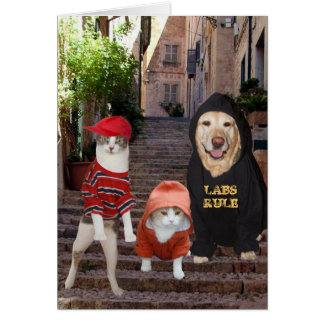 Funny pets Whazup in da 'hood? Card