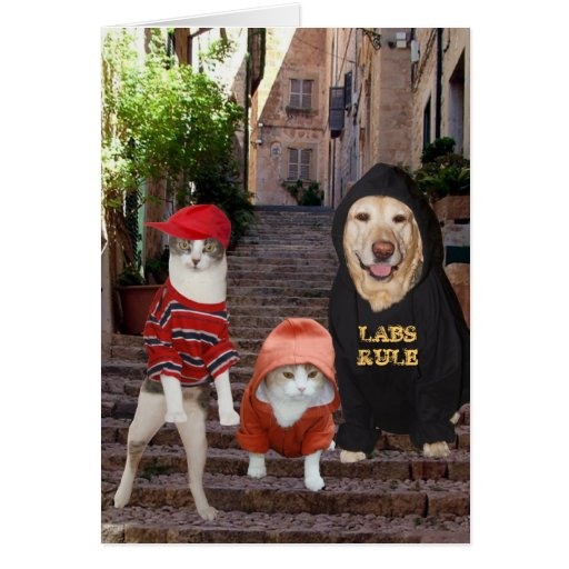 Funny pets Whazup in da 'hood? Cards