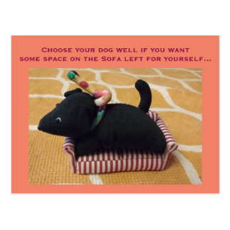 Funny photocard with a small toy dog on a Sofa Postcard