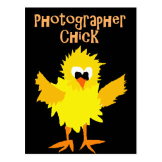 Funny Photographer Chick Cartoon Art Postcard